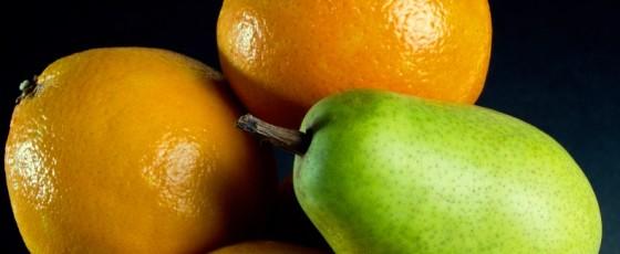 warzywa zakaz eksportu do rosji
